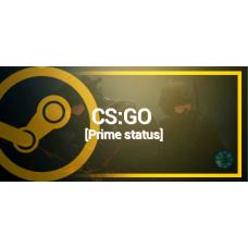 Counter-Strike: Global Offensive CS: GO Prime Status